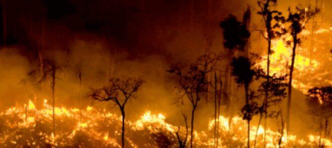 CRISE GERAL: Deputado apresenta projeto para declarar estado de emergência climática no Brasil